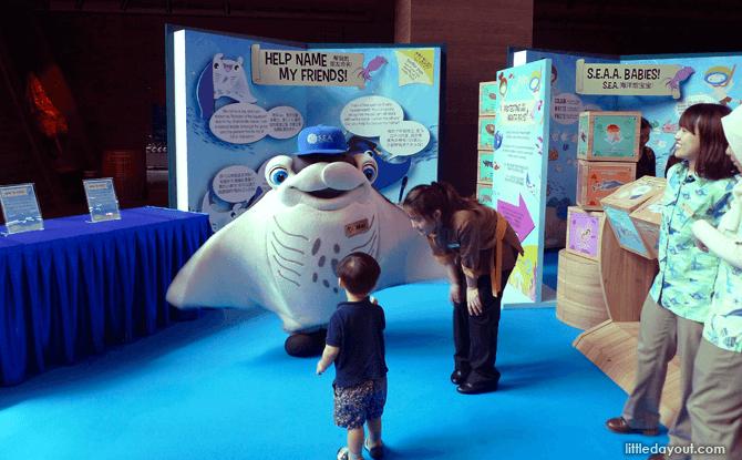 Imagine Native S.E.A. Aquarium manta station