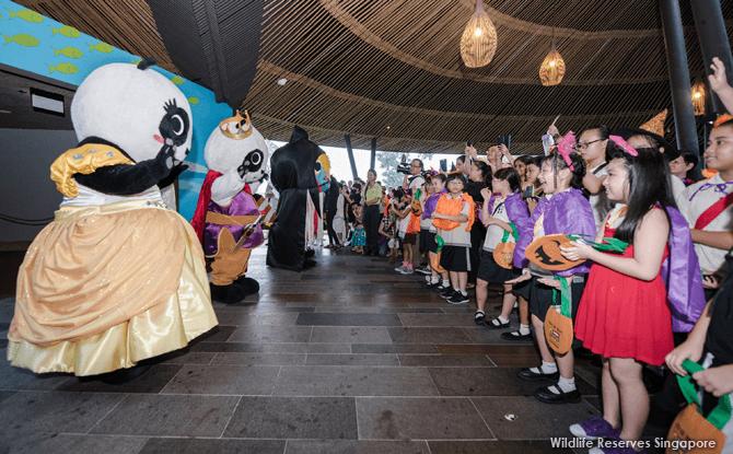 eSafari-Boo-River-Safari-Panda-mascots-in-fairy-tale-finery