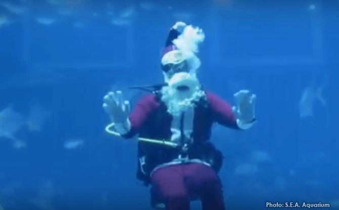 S.E.A Aquarium Christmas