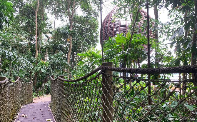 Mid-Canopy Walk at Sungei Buloh Eastern Extension