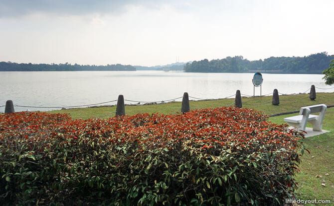View from Upper Peirce Reservoir Park