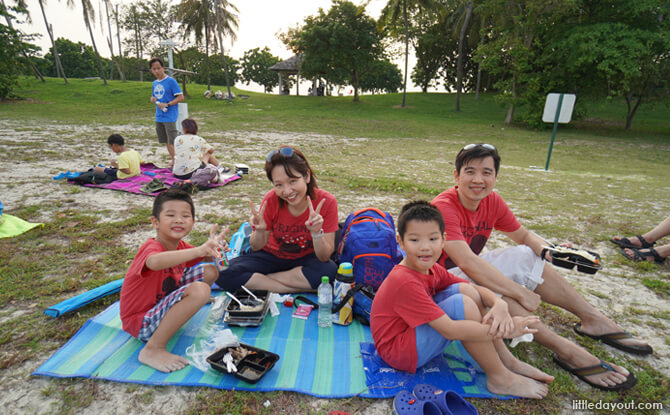 happy picnickers e