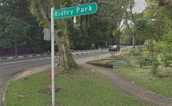 ridley-park