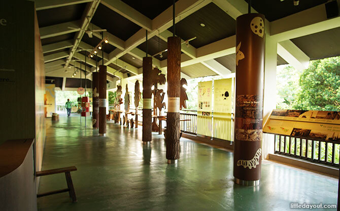 Sentosa Nature Discovery Overview