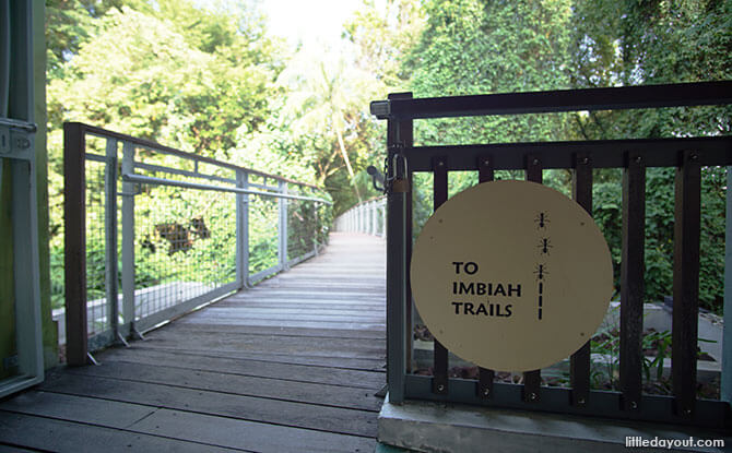 Head to the Imbiah Trails