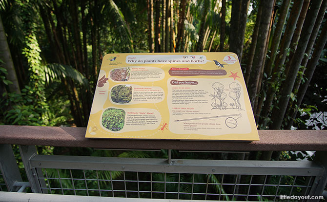 Information panels about nature in Sentosa