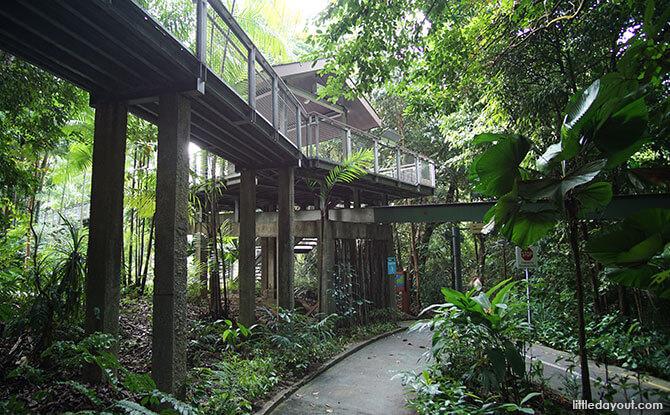 Bridge to Walking Trails on Sentosa