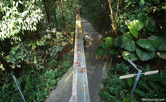 Old monorail track, Sentosa