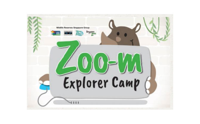 Zoo-m Explorer Camp